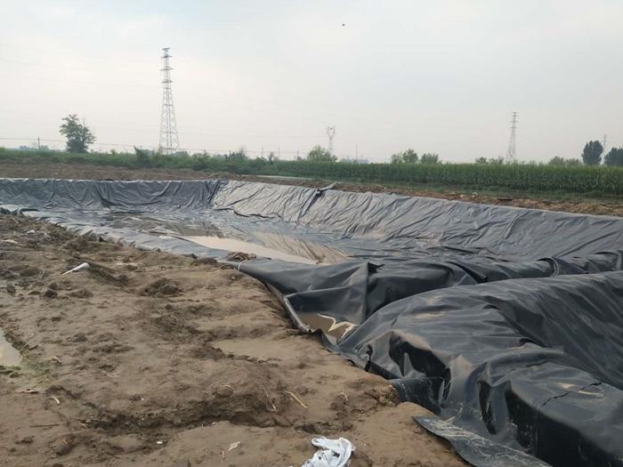 河北深州化粪池工程案例