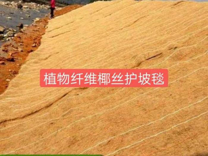 椰丝生态护坡毯